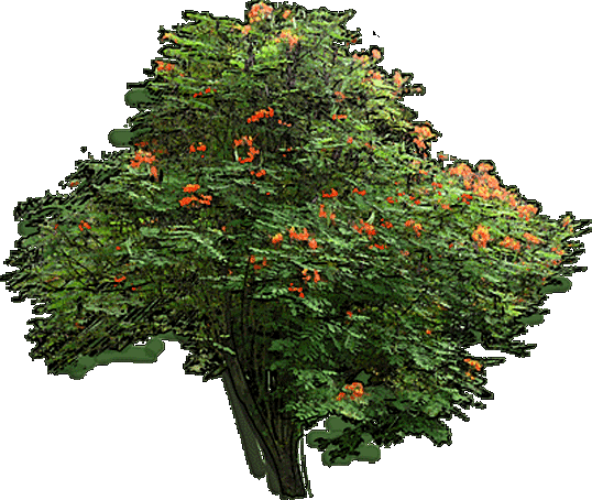 Gardenpuzzle - Online Garden Design App